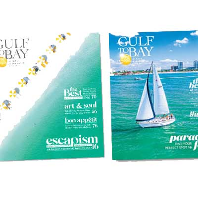 Free Destination Magazine for Visit St. Pete/Clearwater
